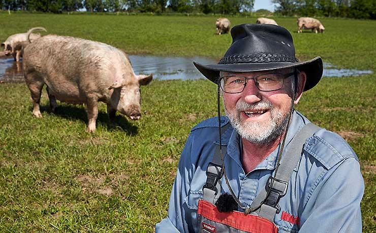 Hils på øko-grisene til Sofari