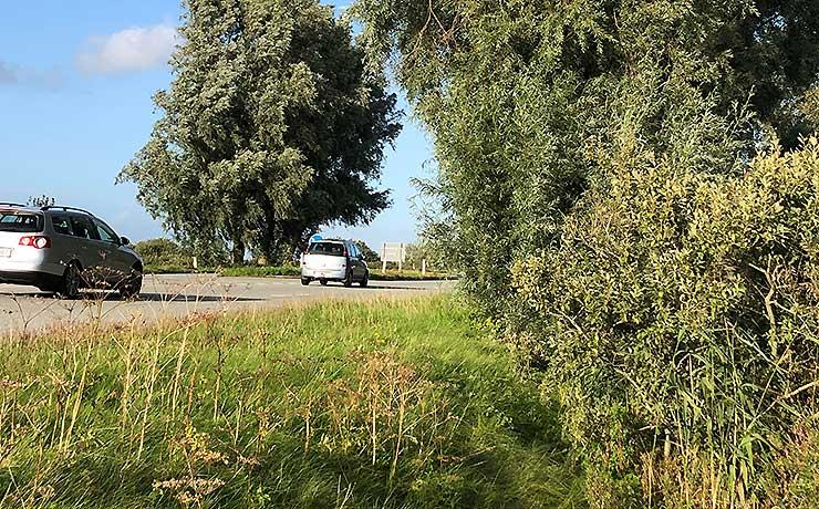 Renovering af vejgrøfter og etablering af blomstrende vejrabatter langs Ny Nibevej