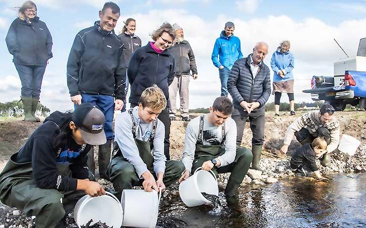 Fiskebestand i Dybvad Å og Limfjorden får bedre vilkår!